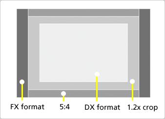 Nikon D4 - Patru optiuni de zona de imagine